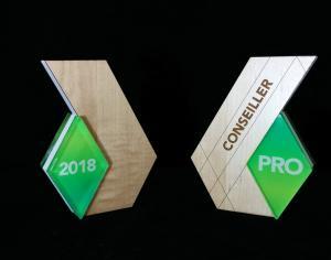 Trophée en bois et acrylique
